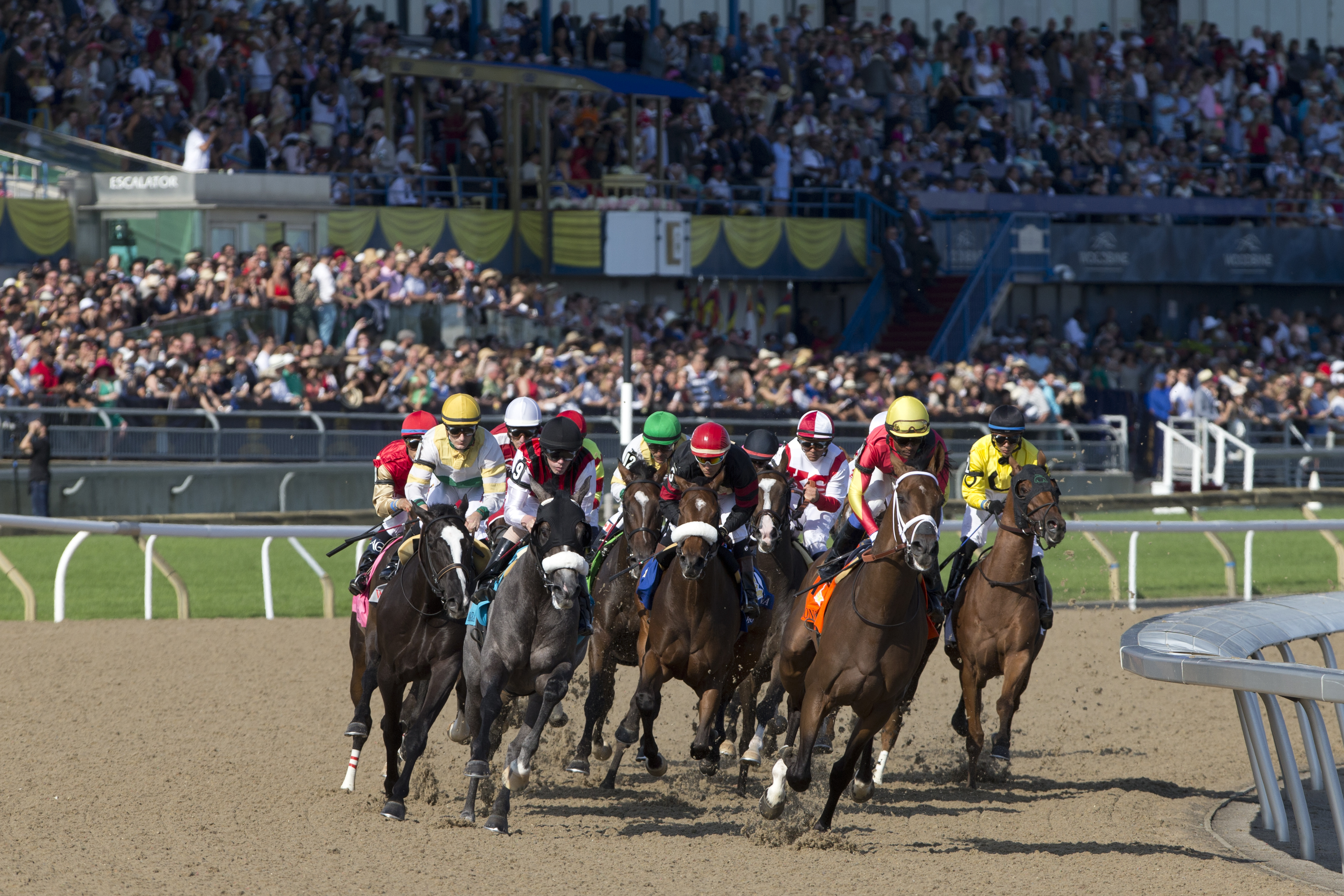 Woodbine Announces 2018 Thoroughbred Stakes Schedule