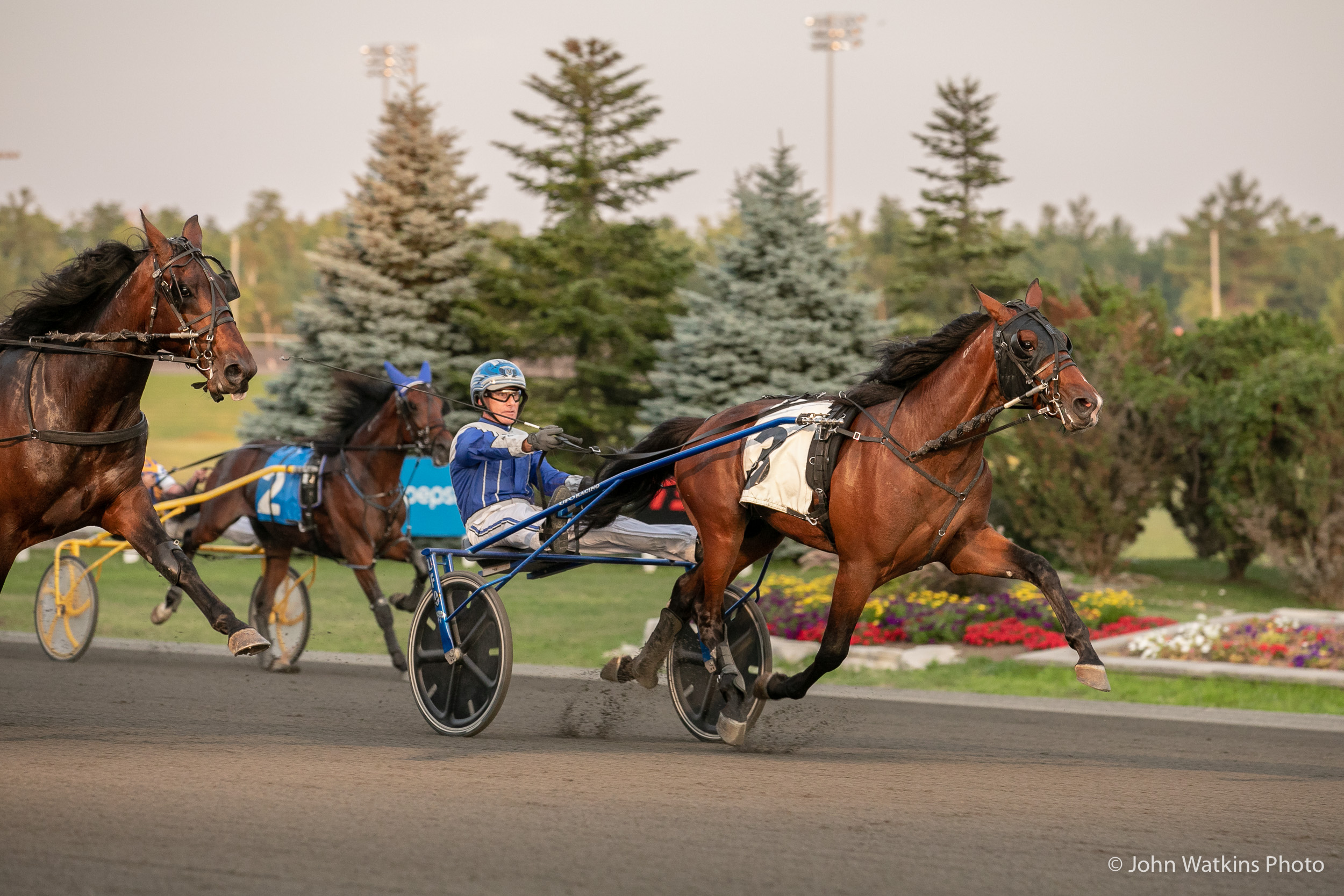Woodbine Racetrack Results