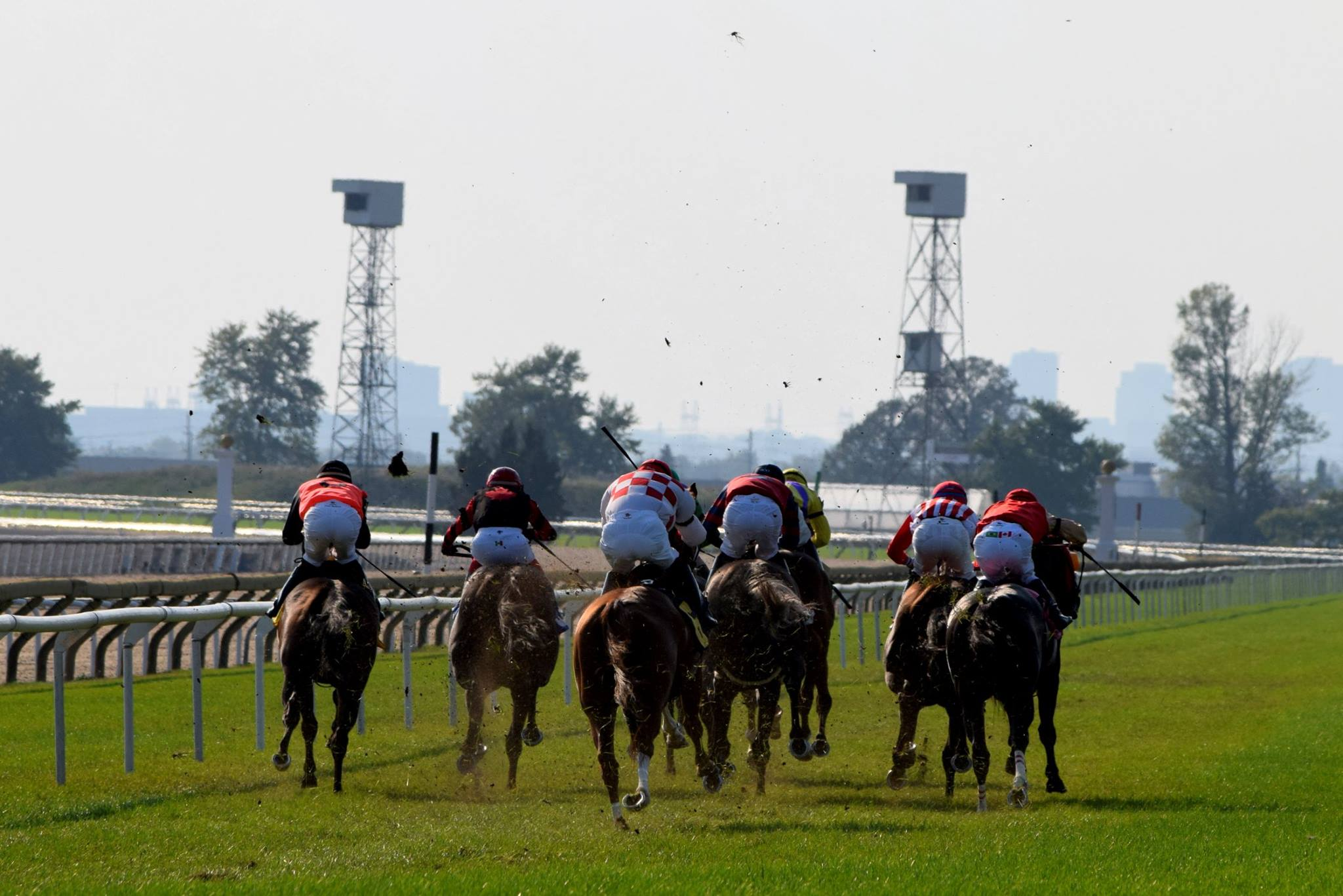 Where Is Woodbine Racetrack Located